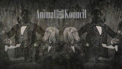 AnimalKouncil