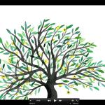 Hello Nico〈哭泣的橄欖樹〉動畫 MV  播下愛與和平的種子