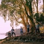 2015 香港大團誕生第二季入選單位介紹-Stranded Whale