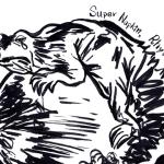 月球上有隻看著地球哭泣的蜥蜴 ─ Super Napkin《Rhythmic Lizard Moon》