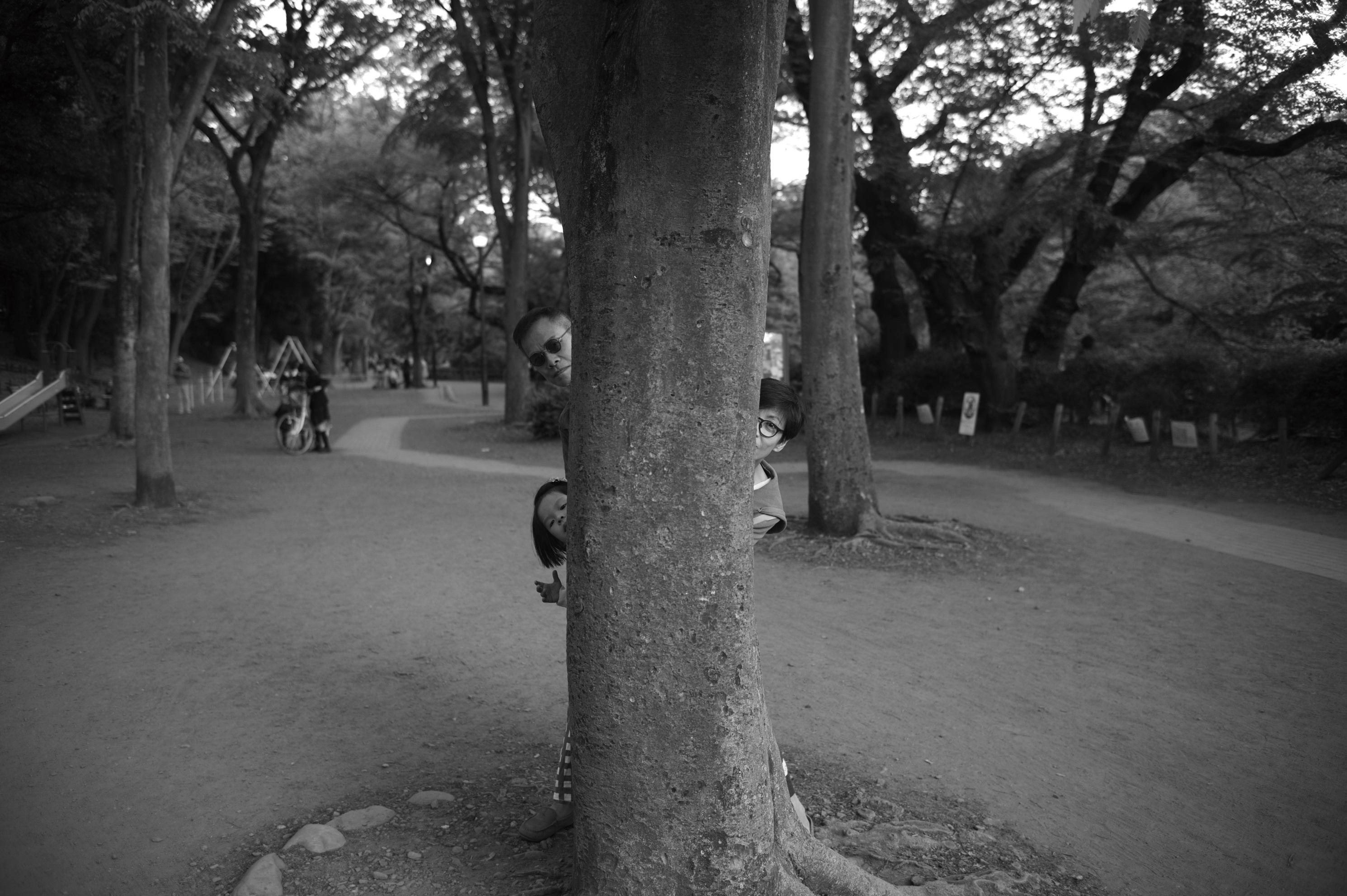 取景於日本東京的代代木公園(種子音樂提供)