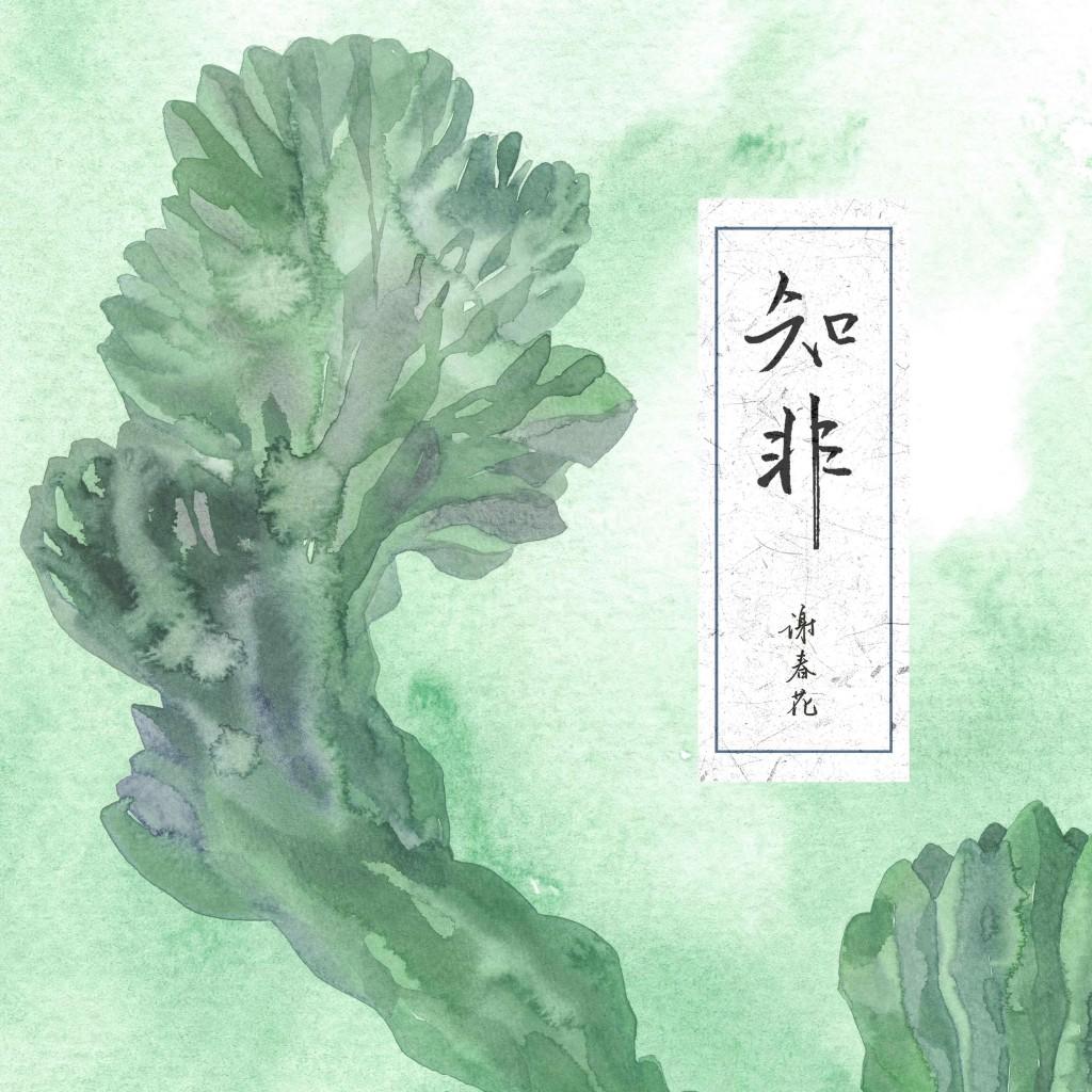 《知非》專輯封面