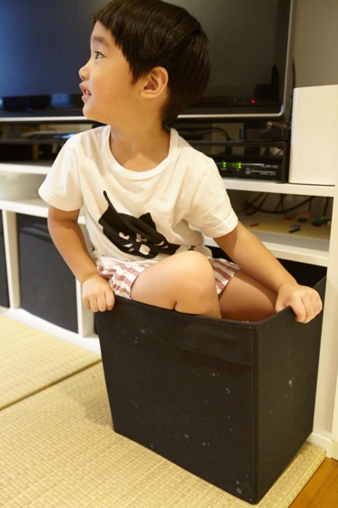 「抖抖常常會忘記自己已經長大,還想躲進收納盒裡。」