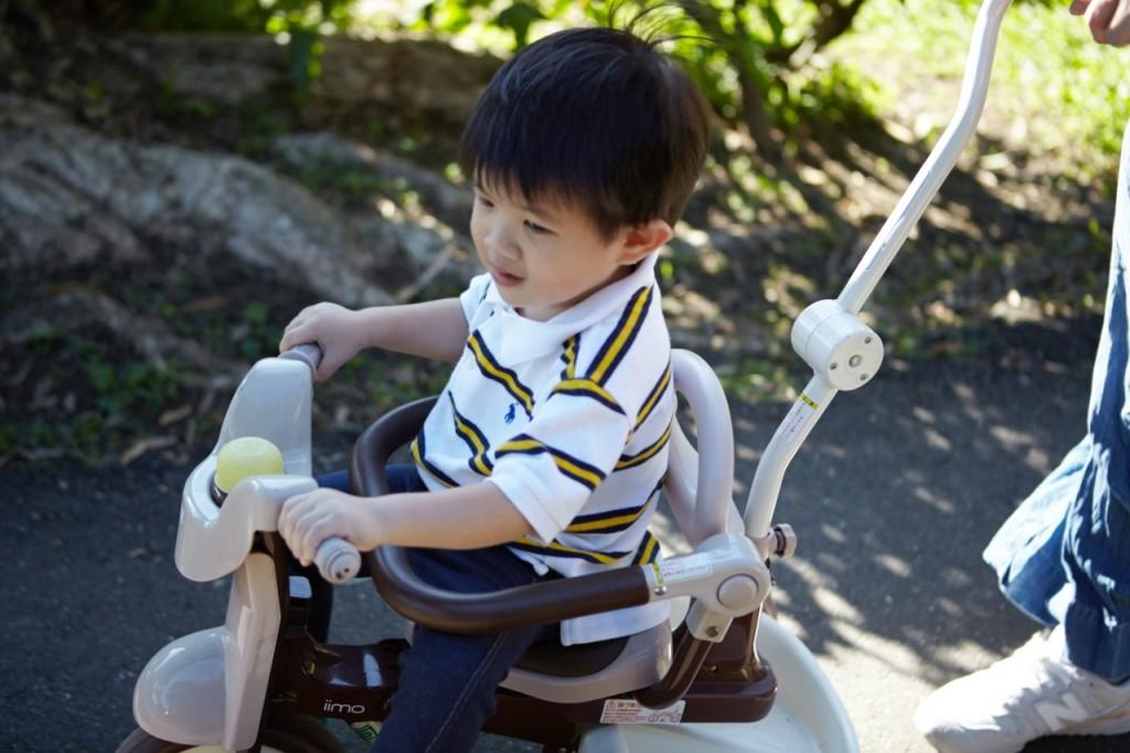 我跟著把拔馬麻一邊推著騎三輪車的賴錚,一邊慢慢享受和煦舒適的微風。