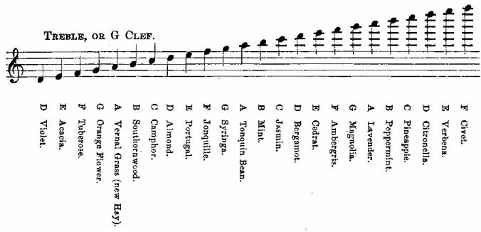 音樂與味蕾的狂歡—聽覺與味覺的關聯_2