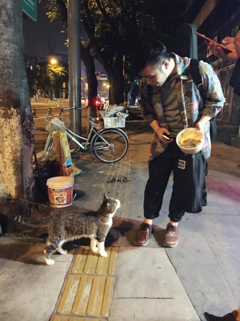 演完回去的路上,一隻獨眼貓咪突然沖了出來,對著育融一直叫,又撒嬌,有貓奴體質的育融很輕易地就被俘獲了。